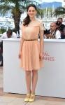 Marion Cotillard en Dior 2