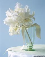 White flowers 7