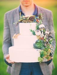 Cake 3 Original