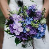Blue and purple 2