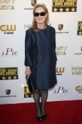Meryl Streep wore a Stella McCartney dress with Salvatore Ferragamo heels, a Christian Louboutin clutch and Jorge Adeler jewelery